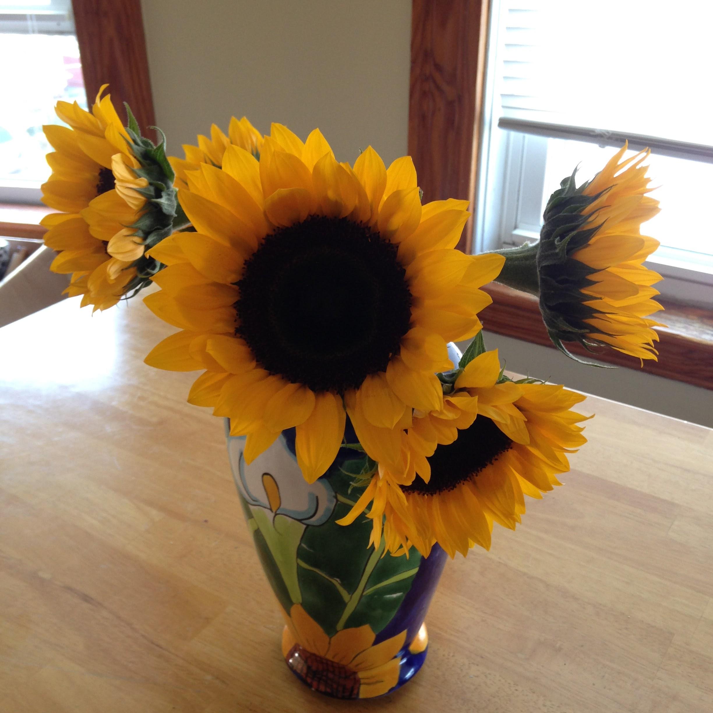 sunflowers blue vase table