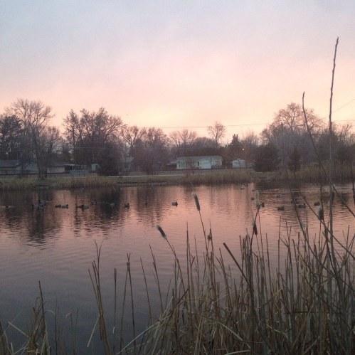 boise park pink sky pond