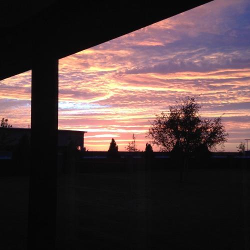 pink gold texas sunset sky
