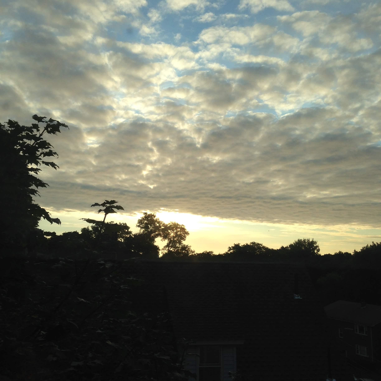kitchen window morning august light