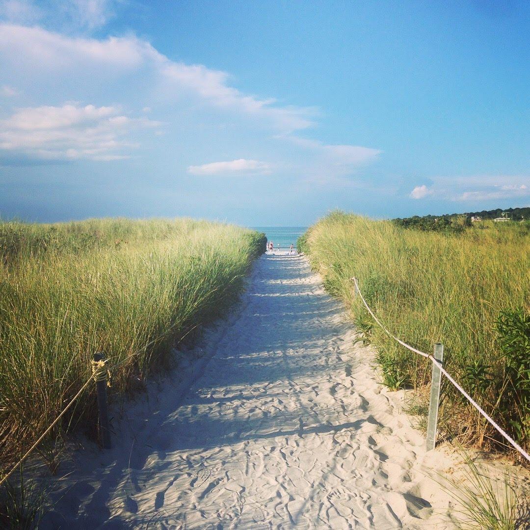 wingaersheek beach path reeds blue sky