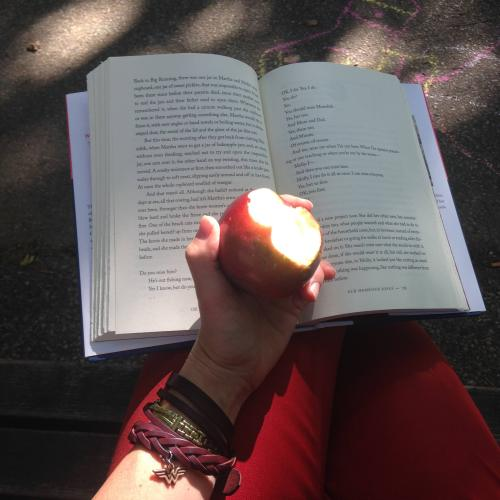 book apple bench sunlight
