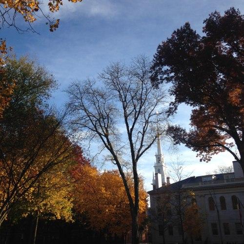 mem church leaves fall blue sky Harvard yard