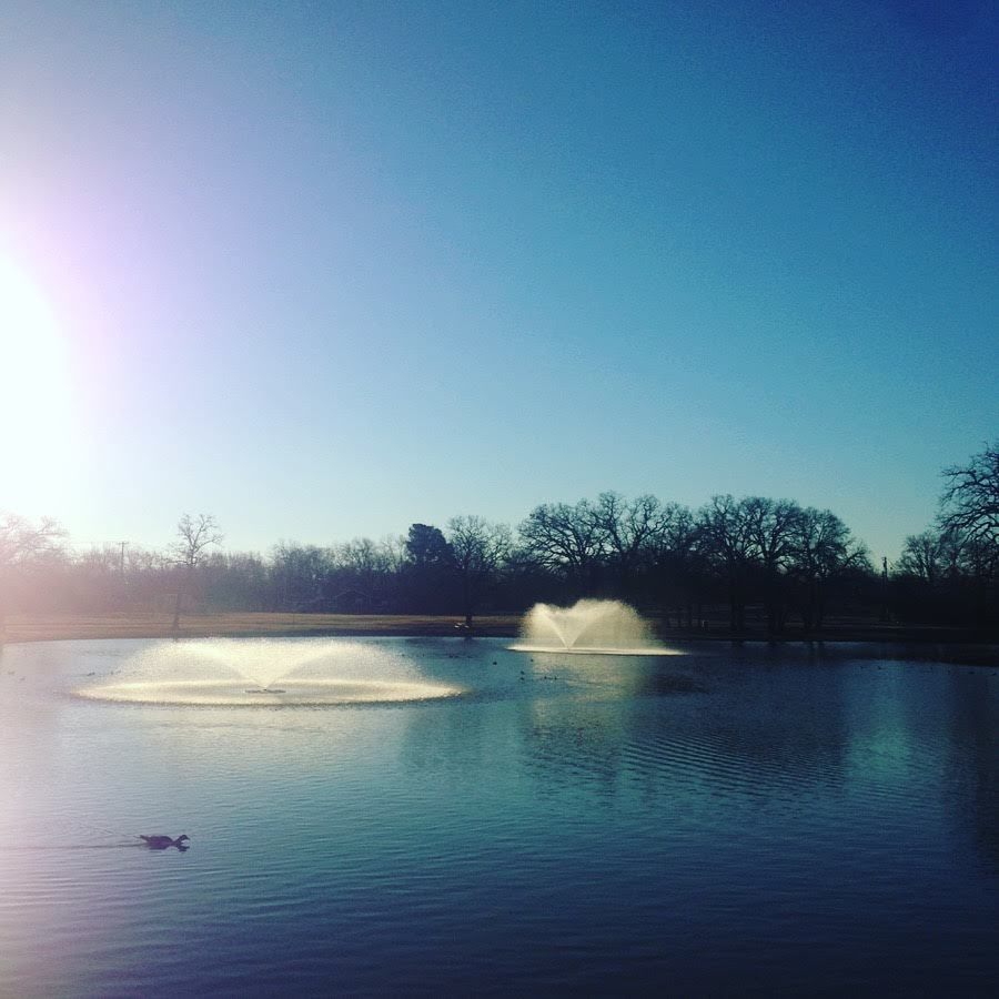 park pond blue sky