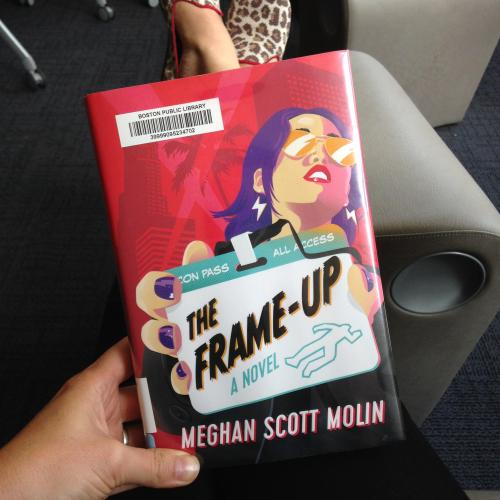 frame-up-book