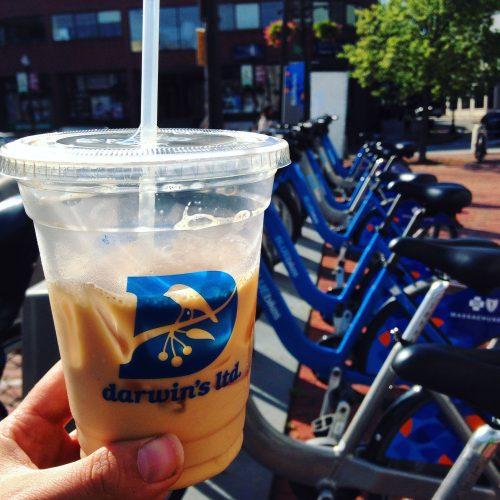 iced-chai-blue-bikes