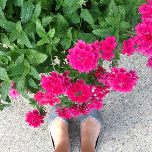 pink flowers flats shoes sidewalk