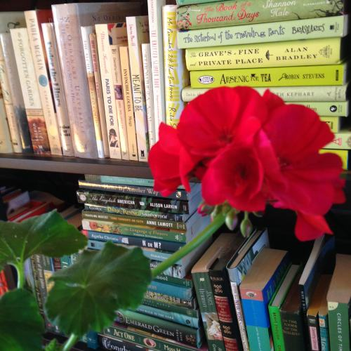 geraniums-books