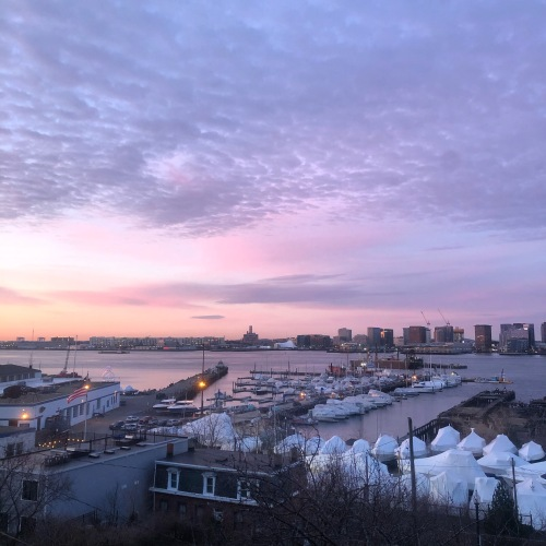 harbor-purple-sunrise